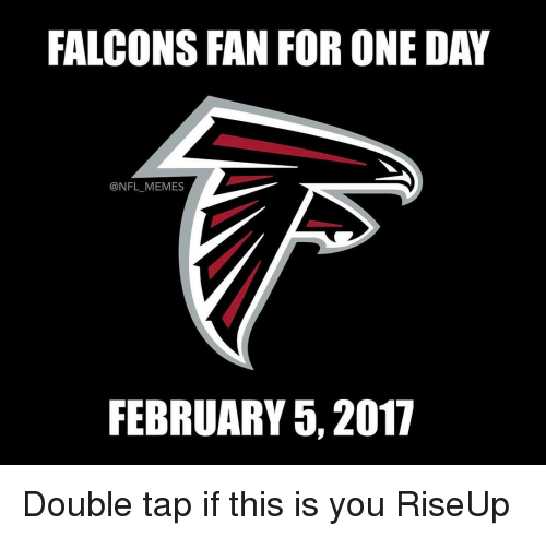 Falcons Fans: FALCONS FAN FOR ONE DAY  @NFL MEMES  FEBRUARY 5, 2017 Double tap if this is you RiseUp