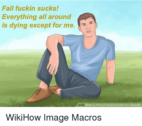 Fall, How To, and Image: Fall fuckin sucks!  Everything all around  is dying except for me.  wiki  How to Prevent Seasonal Affective Disorder WikiHow Image Macros