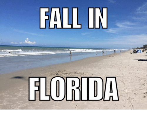 Fall In Florida: FALL IN  FLORIDA