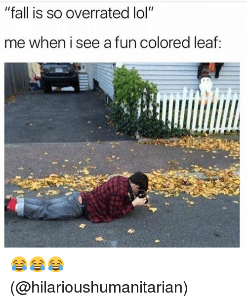 """Fall, Lol, and Memes: """"fall is so overrated lol""""  me when i see a fun colored leaf: 😂😂😂 (@hilarioushumanitarian)"""