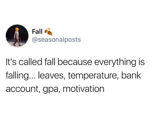 Fall, Bank, and Gpa: Fall  @seasonalposts  It's called fall because everything is  falling.. leaves, temperature, bank  account, gpa, motivation
