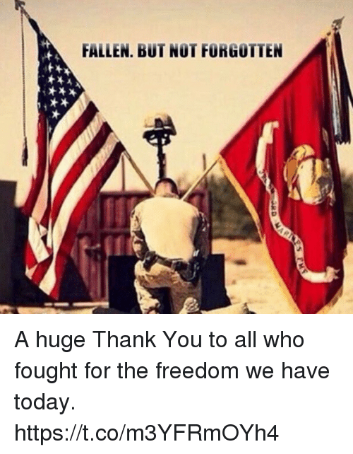 Memes, Thank You, and Today: FALLEN, BUT NOT FORGOTTEN A huge Thank You to all who fought for the freedom we have today. https://t.co/m3YFRmOYh4
