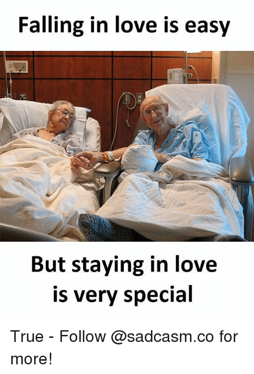 Love, Memes, and True: Falling in love is easy  But staying in love  is verv specia True - Follow @sadcasm.co for more!