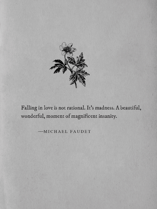 rational: Falling in love is not rational. It's madness. A beautiful,  wonderful, moment of magnificent insanity.  MICHAEL FAUDET