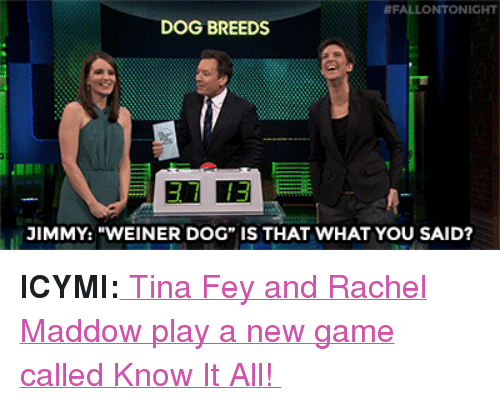 """Rachel Maddow:  #FALLONTONIGHT  DOG BREEDS  37 13  JIMMY: """"WEINER DOG"""" IS THAT WHAT YOU SAID? <p><b>ICYMI:</b><a href=""""https://www.youtube.com/watch?v=xd2byPBElig"""" target=""""_blank""""> Tina Fey and Rachel Maddow play a new game called Know It All!</a></p>"""