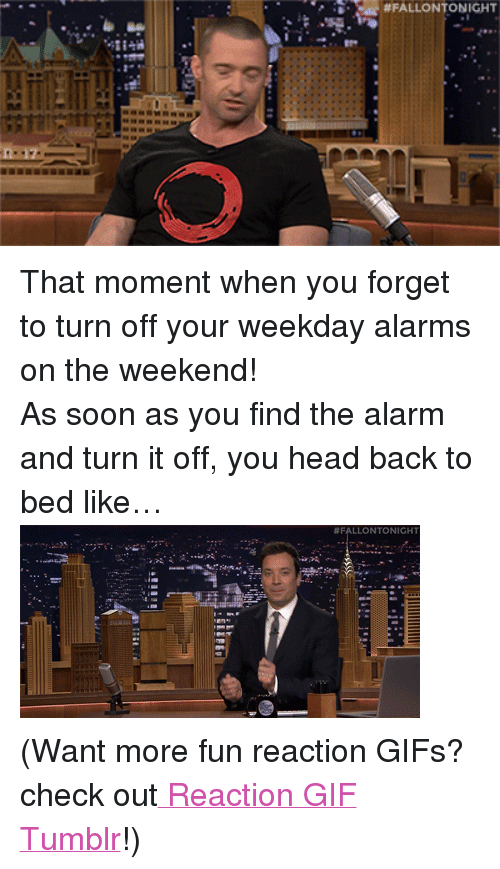 "reaction gifs:  #FALLONTONIGHT  I- <p>That moment when you forget to turn off your weekday alarms on the weekend! </p> <p>As soon as you find the alarm and turn it off, you head back to bed like&hellip;<img alt="""" src=""https://78.media.tumblr.com/7b25ae64159d230cf5d838b0d3505d58/tumblr_nbl7qqBquq1tv4k5po2_400.gif""/></p> <p>(Want more fun reaction GIFs? check out<a href=""http://fallontonightgifs.tumblr.com/"" target=""_blank""> Reaction GIF Tumblr</a>!) </p>"