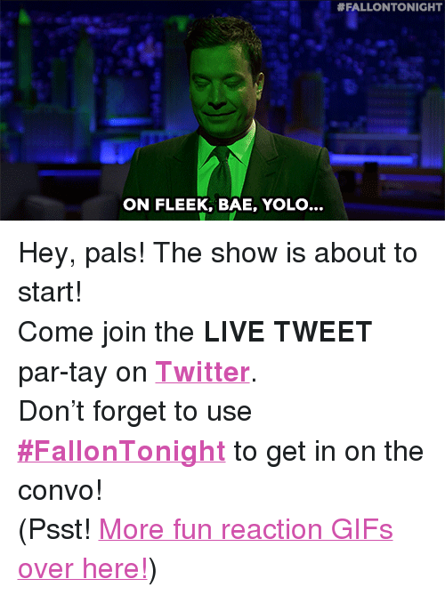 "reaction gifs:  #FALLONTONIGHT  ON FLEEK, BAE, YOLO... <p>Hey, pals! The show is about to start! </p><p>Come join the <b>LIVE TWEET</b> par-tay on <b><a href=""http://twitter.com/fallontonight"" target=""_blank"">Twitter</a></b>. </p><p>Don't forget to use <b><a href=""https://twitter.com/search?f=realtime&amp;q=%23FallonTonight&amp;src=typd"" target=""_blank"">#FallonTonight</a></b> to get in on the convo! </p><p>(Psst! <a href=""http://fallontonightgifs.tumblr.com"" target=""_blank"">More fun reaction GIFs over here!</a>) </p>"