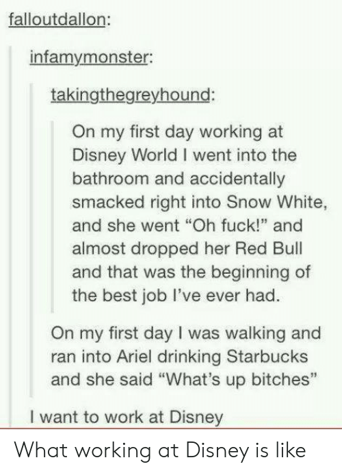"""Snow White: falloutdallon  infamymonster:  takingthegreyhound:  On my first day working at  Disney World I went into the  bathroom and accidentally  smacked right into Snow White,  and she went """"Oh fuck!"""" and  almost dropped her Red Bul  and that was the beginning of  the best job lI've ever had.  On my first day I was walking and  ran into Ariel drinking Starbucks  and she said """"What's up bitches""""  I want to work at Disney What working at Disney is like"""