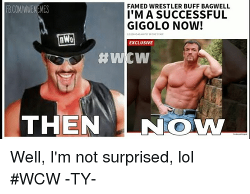 Lol, Wcw, and World Wrestling Entertainment: FAMED WRESTLER BUFF BAGWELL  FBCOM/WWEMEMES  IMA SUCCESSFUL  GIGOLO NOW!  nWo  EXCLUSIVE  #Wicw  THEN  LNOWM Well, I'm not surprised, lol #WCW -TY-