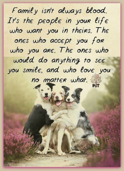 Family Isnt Always Blood: Family isn't always blood.  It's the people in youR life  who want you in theiRs. The  s who accept you f  who you aRE. The ones who  would do anything to see  you smile, and who love you  no mattER what,  one  OR  PT
