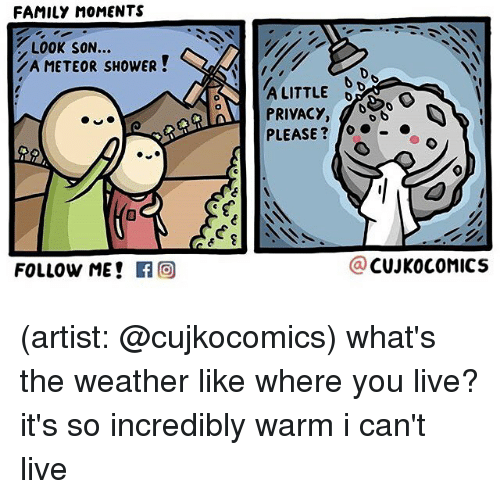 Family, Memes, and Shower: FAMILY MOMENTS  LOOK SON...  ZA METEOR SHOWER  FOLLOW ME!  f CO  A LITTLE  PRIVACY  to  PLEASE  CUJKO COMICS (artist: @cujkocomics) what's the weather like where you live? it's so incredibly warm i can't live