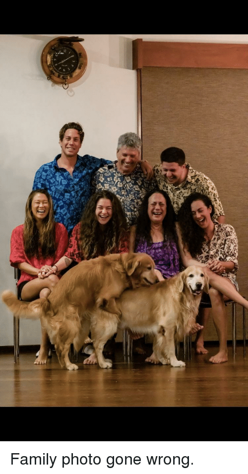 Gone Wrong: Family photo gone wrong.