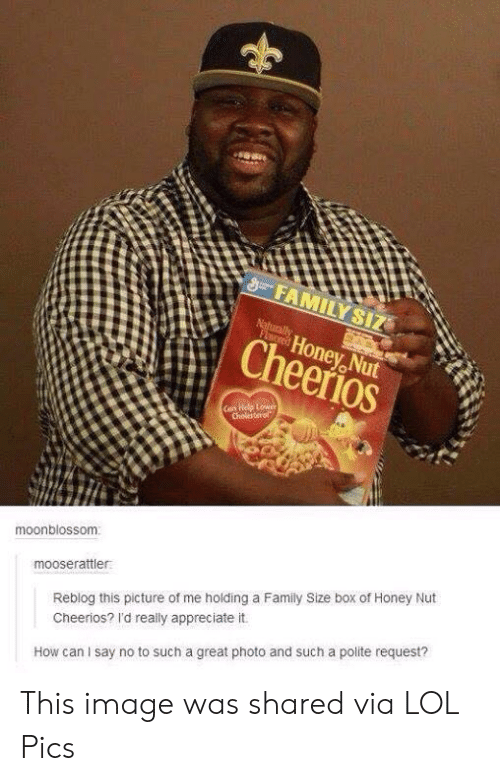 lol pics: FAMILY SIZ  Naturally  FLored  Honey Nut  Cheerios  Can Help Lower  Cholesterol  moonblossom  mooserattler  Reblog this picture of me holding a Family Size box of Honey Nut  Cheerios? I'd really appreciate it.  How can I say no to such a great photo and such a polite request? This image was shared via LOL Pics