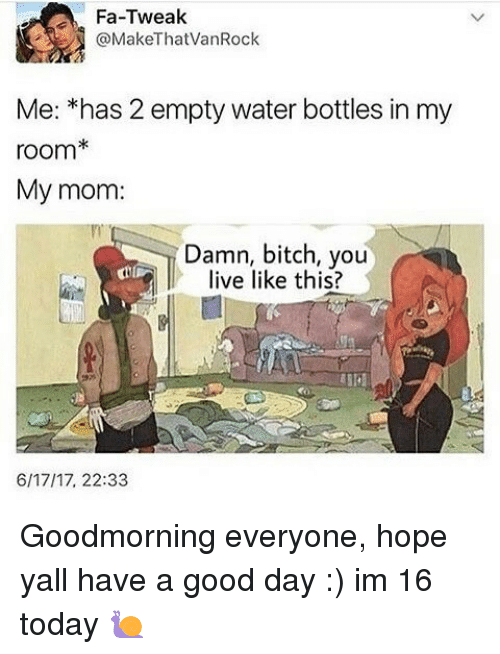 Bitch, Memes, and Good: Fan-Tweak  @MakeThatVan Rock  Me: *has 2 empty water bottles in my  room*  My mom:  Damn, bitch, you  live like this?  6/17/17, 22:33 Goodmorning everyone, hope yall have a good day :) im 16 today 🐌