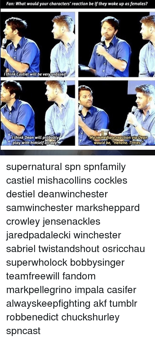 """Memes, Titties, and Tumblr: Fan: What would your characters' reaction be if they woke up asfemales?  I think Castiel will be very unfazed  Ithink Dean will probably  MV1mmediate reaction via Dean  Play with himself all day  would be, """"Hehehe. Titties. supernatural spn spnfamily castiel mishacollins cockles destiel deanwinchester samwinchester marksheppard crowley jensenackles jaredpadalecki winchester sabriel twistandshout osricchau superwholock bobbysinger teamfreewill fandom markpellegrino impala casifer alwayskeepfighting akf tumblr robbenedict chuckshurley spncast"""