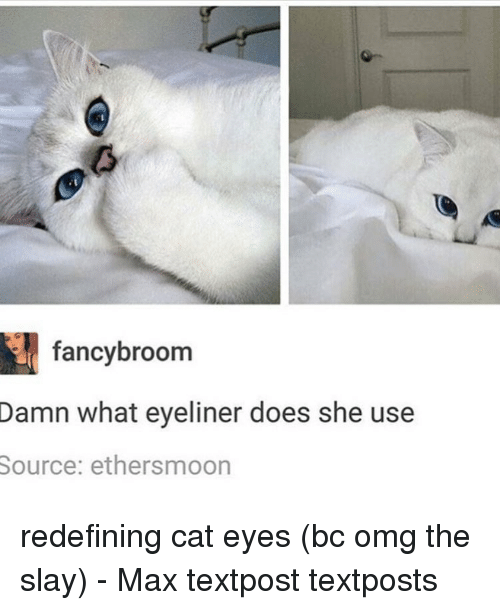 fanciness: fancy broom  Damn what eyeliner does she use  Source: ethersmoon redefining cat eyes (bc omg the slay) - Max textpost textposts