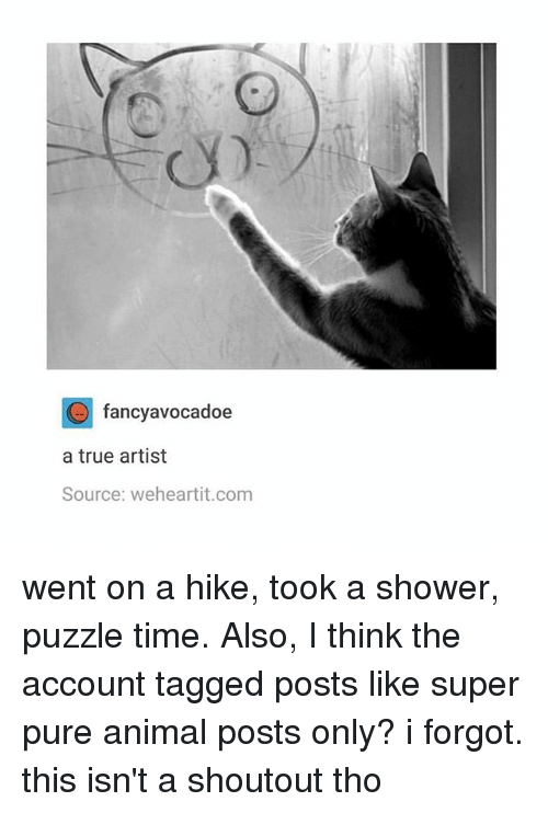 Memes, Shower, and True: fancyavocadoe  a true artist  Source: weheartit.com went on a hike, took a shower, puzzle time. Also, I think the account tagged posts like super pure animal posts only? i forgot. this isn't a shoutout tho