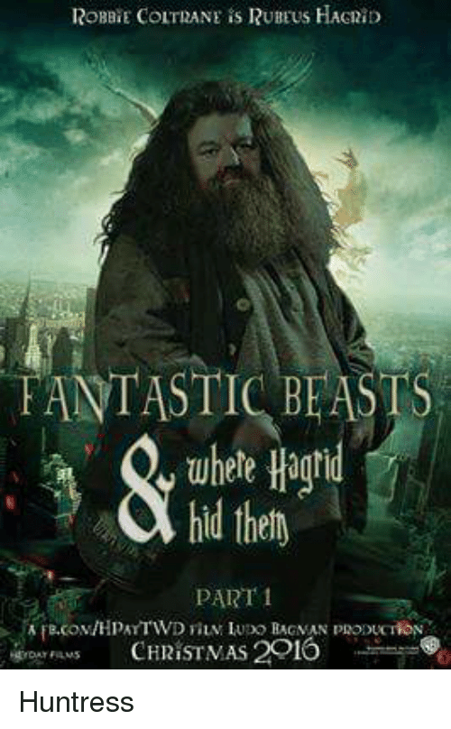 Fantastic Beasts Where Hagrid Hid Thely Part Christmas