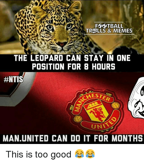 Memes, Good, and United: FAPATBALL  TRCOLLS & MEMES  THE LEOPARD CAN STAY IN ONE  POSITION FOR 8 HOURS  #NTIS  UNT  MAN UNITED CAN DO IT FOR MONTHS This is too good 😂😂