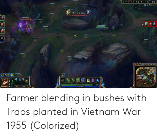 bushes: Farmer blending in bushes with Traps planted in Vietnam War 1955 (Colorized)