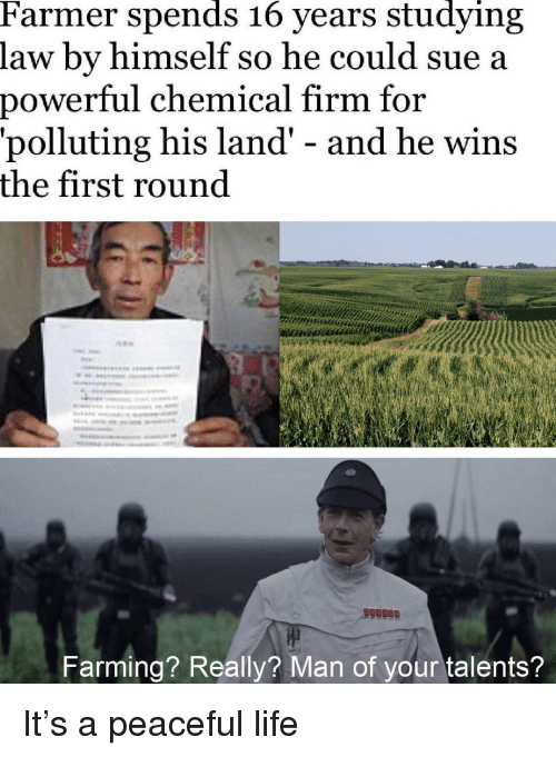 Farming: Farmer spends 16 years studying  law by himself so he could sue a  power  ful chemical firm for  'polluting his land' - and he wins  the first round  Farming? Really? Man of your talents? It's a peaceful life