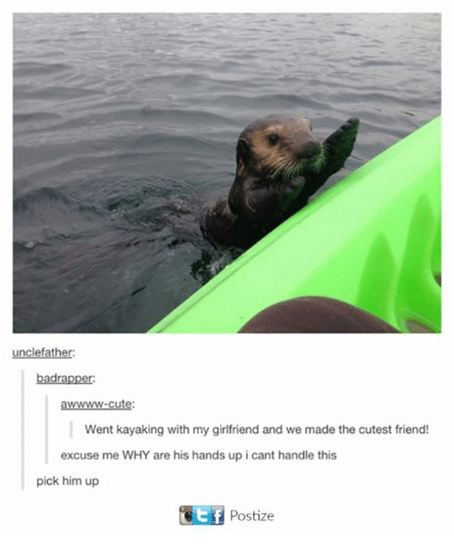 Cant Handle This: father:  bad rapper:  awwwwww-cute:  Went kayaking with my girlfriend and we made the cutest friend!  excuse me WHY are his hands up i cant handle this  pick him up  Gotf Postize