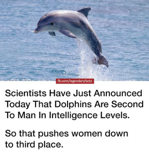 Memes, Dolphins, and fb.com: fb.com/legendaryfacts  Scientists Have Just Announced  Today That Dolphins Are Second  To Man In Intelligence Levels.  So that pushes women down  to third place.