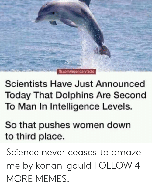 Konan: fb.com/legendaryfacts  Scientists Have Just Announced  Today That Dolphins Are Second  To Man In Intelligence Levels.  So that pushes women down  to third place. Science never ceases to amaze me by konan_gauld FOLLOW 4 MORE MEMES.