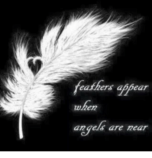 🤖: feathers ablear  when  angels are near