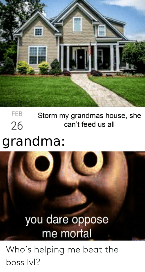 storm: FEB  Storm my grandmas house, she  26  can't feed us all  grandma:  you dare oppose  me mortal Who's helping me beat the boss lvl?