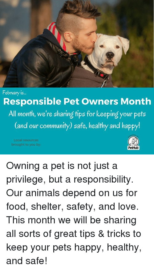 pets our responsibility