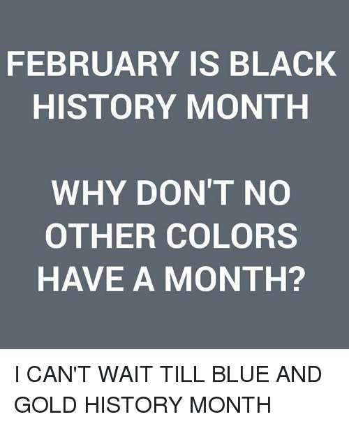 Black History Month, Memes, and 🤖: FEBRUARY IS BLACK  HISTORY MONTH  WHY DON'T NO  OTHER COLORS  HAVE A MONTH? I CAN'T WAIT TILL BLUE AND GOLD HISTORY MONTH