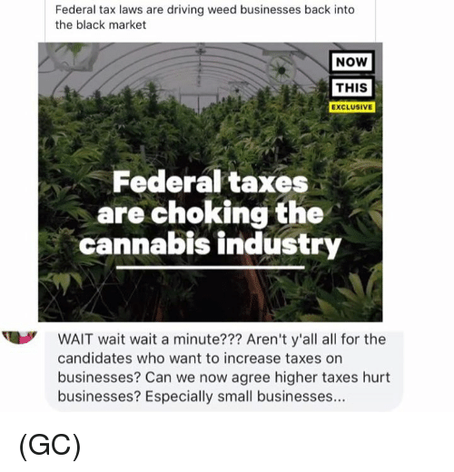 Hurtfully: Federal tax laws are driving weed businesses back into  the black market  NOW  THIS  EXCLUSIVE  Federal taxes  are choking the  cannabis industry  WAIT wait wait a minute??? Aren't y'all all for the  candidates who want to increase taxes on  businesses? Can we now agree higher taxes hurt  businesses? Especially small businesses... (GC)