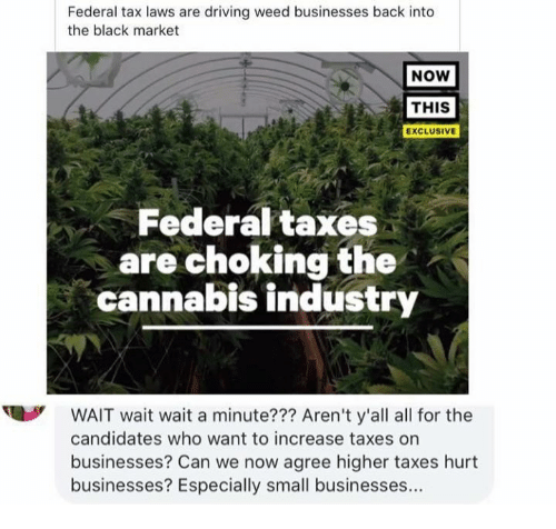 Driving, Memes, and Weed: Federal tax laws are driving weed businesses back into  the black market  NOW  THIS  EXCLUSIVE  Federal taxes  are choking the  cannabis industry  WAIT wait wait a minute??? Aren't y'all all for the  candidates who want to increase taxes on  businesses? Can we now agree higher taxes hurt  businesses? Especially small businesses...