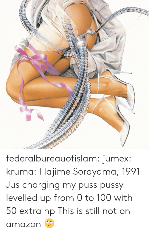 0 to 100: federalbureauofislam:  jumex:  kruma:  Hajime Sorayama, 1991  Jus charging my puss  pussy levelled up from 0 to 100 with 50 extra hp   This is still not on amazon 🙄
