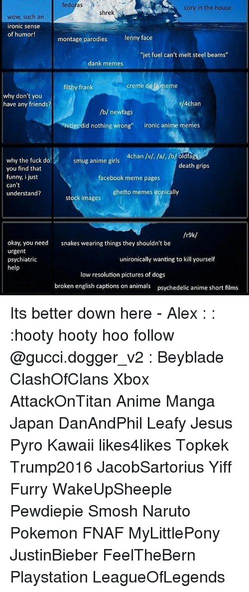 """Corys In The House: fedoras  Cory in the house  Shrek  wow, such an  ironic sense  of humor!  montage parodies  lenny face  """"jet fuel can't melt steel beams'  dank memes  creme de la meme  filthy frank  why don't you  r/4chan  have any friends?  /b/ newfags  hitler did nothing wrong  ironic anime memes  4chan /v/, /a/, /b/ oldfag  why the fuck do  smug anime girls  death grips  you find that  funny, i just  facebook meme pages  can't  ghetto memes ironically  understand?  stock images  /r9k/  okay, you need  snakes wearing things they shouldn't be  urgent  unironically wanting to kill yourself  psychiatric  help  low resolution pictures of dogs  broken english captions on animals psychedelic anime short films Its better down here - Alex : : :hooty hooty hoo follow @gucci.dogger_v2 : Beyblade ClashOfClans Xbox AttackOnTitan Anime Manga Japan DanAndPhil Leafy Jesus Pyro Kawaii likes4likes Topkek Trump2016 JacobSartorius Yiff Furry WakeUpSheeple Pewdiepie Smosh Naruto Pokemon FNAF MyLittlePony JustinBieber FeelTheBern Playstation LeagueOfLegends"""