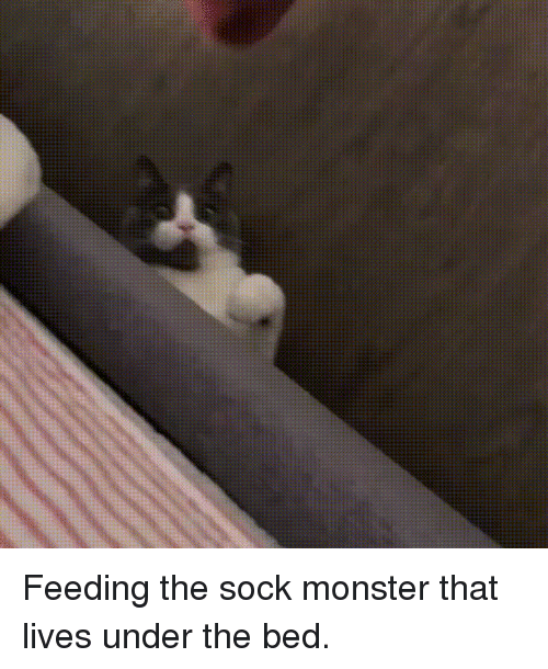 Monster, Bed, and  Lives: Feeding the sock monster that lives under the bed.