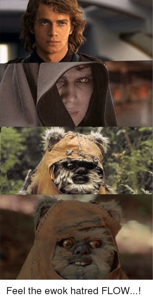 5660 Funny Star Wars Memes Of 2016 On SIZZLE
