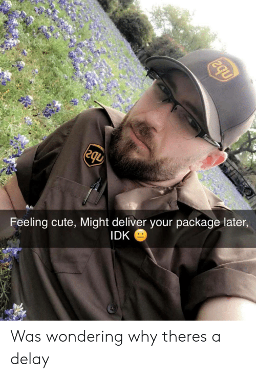 delay: Feeling cute, Might deliver your package later  IDK Was wondering why theres a delay
