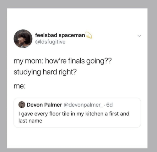 devon: feelsbad spaceman  @ldsfugitive  my mom: how're finals going??  studying hard right?  me:  Devon Palmer @devonpalmer_ 6d  I gave every floor tile in my kitchen a first and  last name