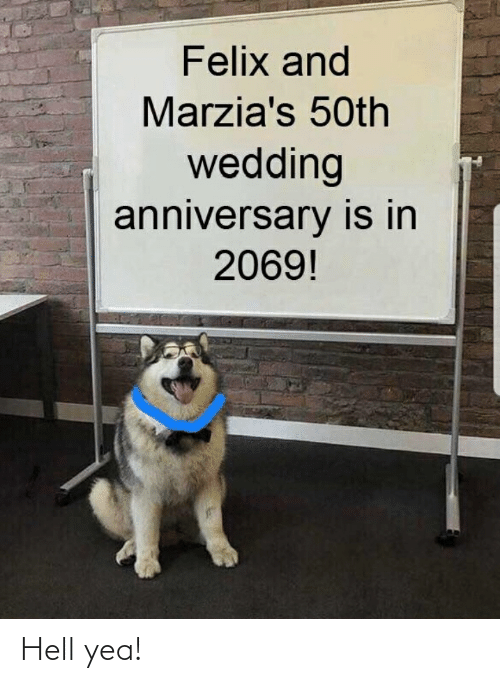wedding anniversary: Felix and  Marzia's 50th  wedding  anniversary is in  2069! Hell yea!
