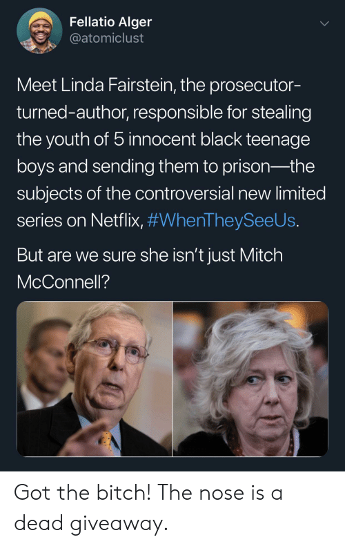 Mitch McConnell: Fellatio Alger  @atomiclust  Meet Linda Fairstein, the prosecutor-  turned-author, responsible for stealing  the youth of 5 innocent black teenage  boys and sending them to prison-the  subjects of the controversial new limited  series on Netflix, #WhenTheySeeUs.  But are we sure she isn't just Mitch  McConnell? Got the bitch! The nose is a dead giveaway.