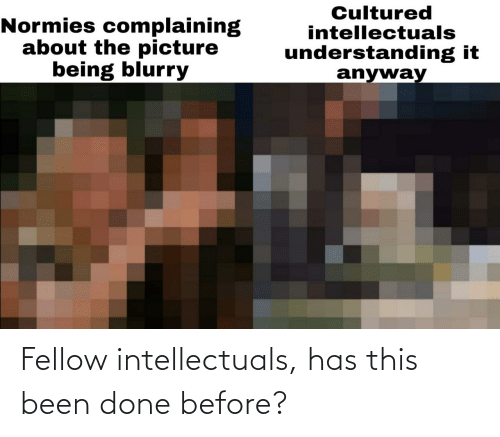 Fellow: Fellow intellectuals, has this been done before?