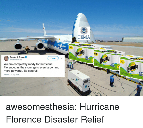 florence: FEMA  112  our  112  Donald J. Trump  @realDonaldTrump  ou  Follow  -12  We are completely ready for hurricane  Florence, as the storm gets even larger and  more powerful. Be careful!  4:39 AM-13 Sep 2018  goin awesomesthesia:  Hurricane Florence Disaster Relief