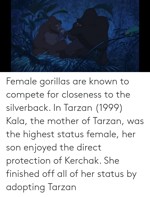 Tarzan: Female gorillas are known to compete for closeness to the silverback. In Tarzan (1999) Kala, the mother of Tarzan, was the highest status female, her son enjoyed the direct protection of Kerchak. She finished off all of her status by adopting Tarzan