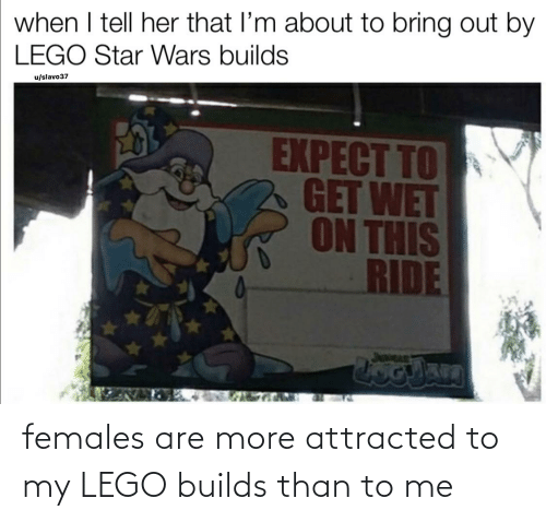 attracted: females are more attracted to my LEGO builds than to me