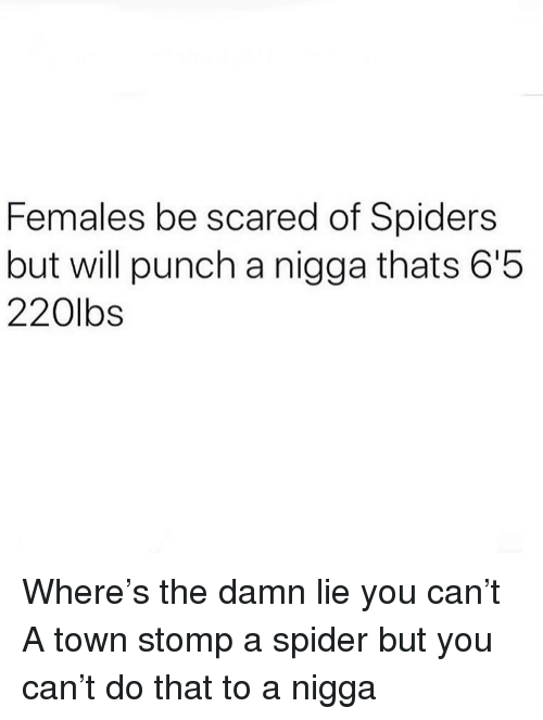 stomp: Females be scared of Spiders  but will punch a nigga thats 6'5  220lbs Where's the damn lie you can't A town stomp a spider but you can't do that to a nigga