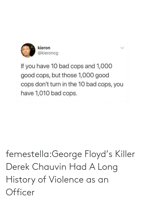killer: femestella:George Floyd's Killer Derek Chauvin Had A Long History of Violence as an Officer