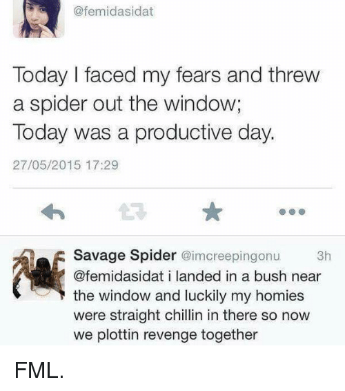 Straight Chillin: @femidasidat  Today I faced my fears and threw  a spider out the window;  Today was a productive day.  27/05/2015 17:29  Savage Spider @imcreepingonu  3h  @femidasidat i landed in a bush near  the window and luckily my homies  were straight chillin in there so now  we plottin revenge together FML.