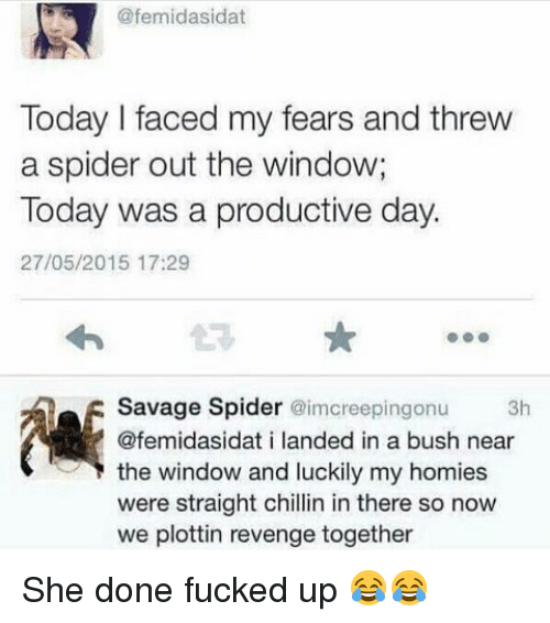 Straight Chillin: femidasidat  Today l faced my fears and threw  a spider out the window;  Today was a productive day.  27/05/2015 17:29  Savage Spider imcreepingonu 3h  @femidasidat i landed in a bush near  the window and luckily my homies  were straight chillin in there so now  we plottin revenge together She done fucked up 😂😂